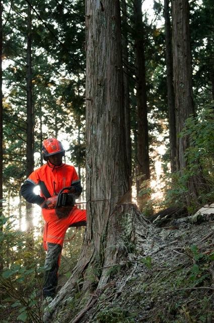 チェーンソー・エキシビジョン/林業技術者みなさん
