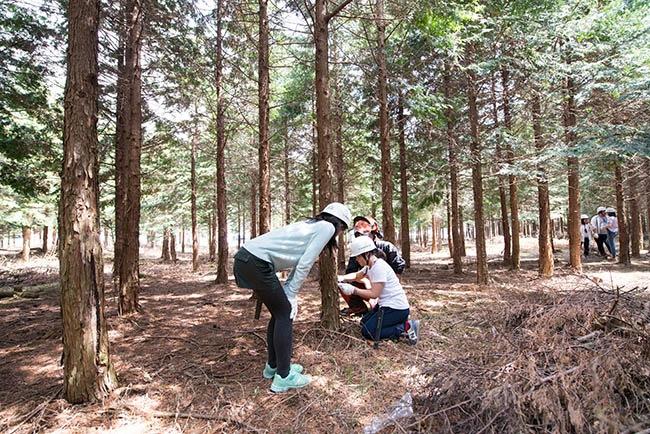 山で木こり体験【受付〆切、当日枠あり!】