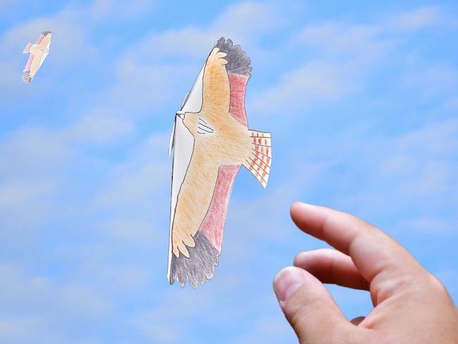 飛べ!トリ型紙ひこうき
